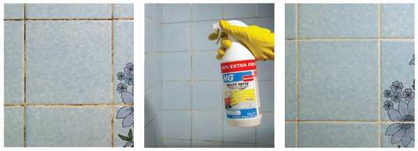 Как избавиться от грибка черной плесени в ванной