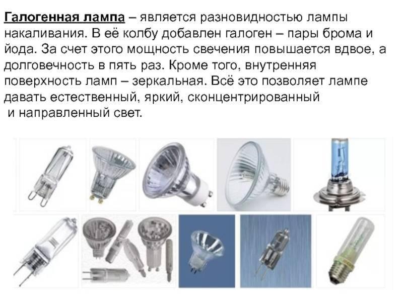 Галогенные лампы g4: характеристики, плюсы и минусы + рейтинг производителей лампочек