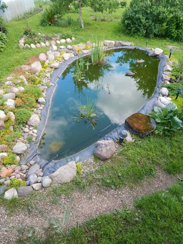 Пруд на даче своими руками: пошаговая инструкция как сделать и где расположить водоем