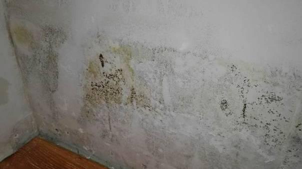 Трещины в стенах: причины и устранение