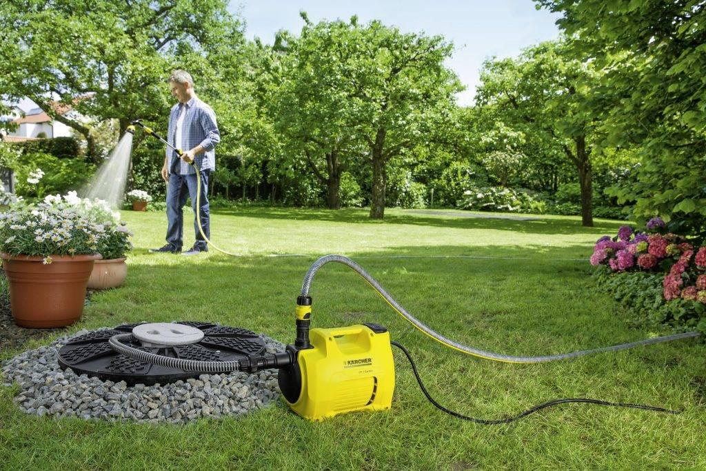 6 советов, как поливать газон: оборудование, частота, нормы