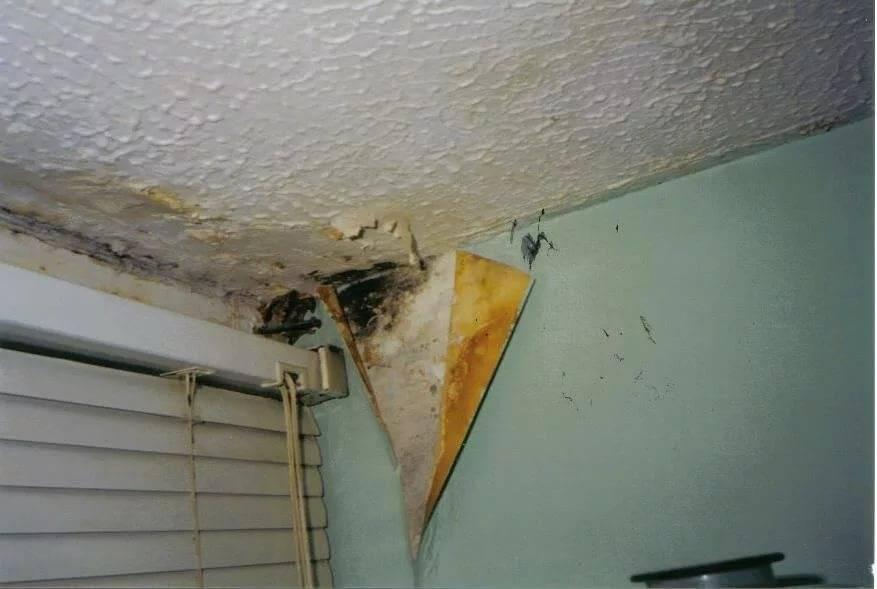 Сыреет стена в квартире что делать