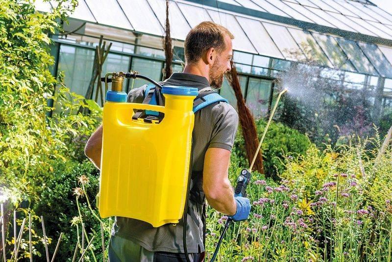 Лучшие садовые опрыскиватели: ТОП-13 лучших моделей и руководство по выбору