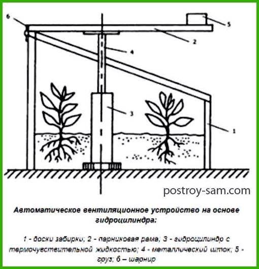 Устройство и применение автоматической вентиляции теплицы