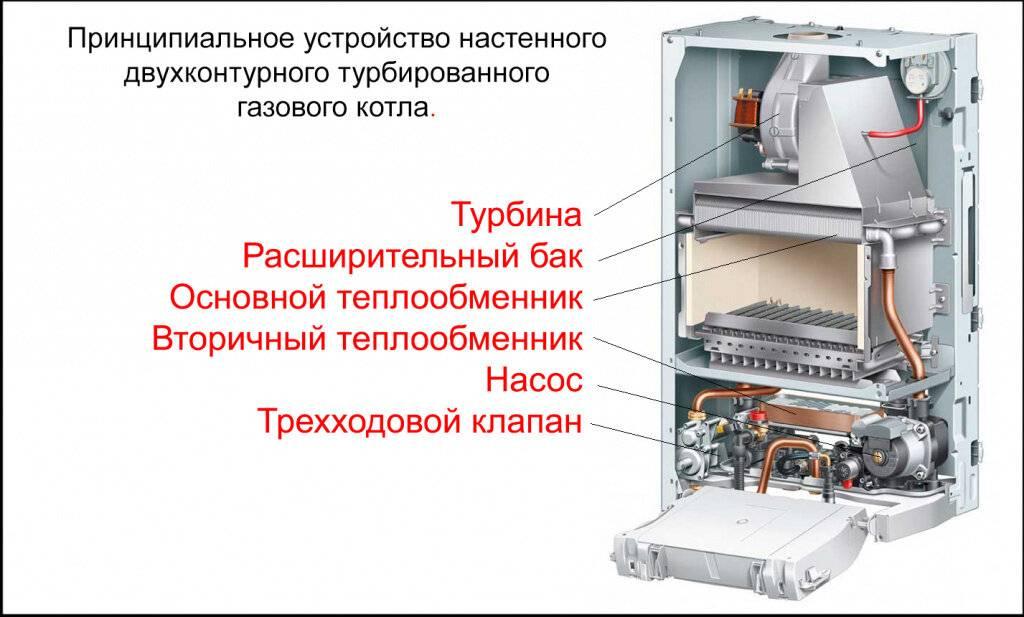 Особенности устройства газовых котлов протерм
