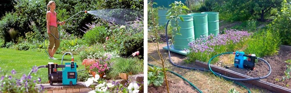 Можно ли поливать огород водой из пруда