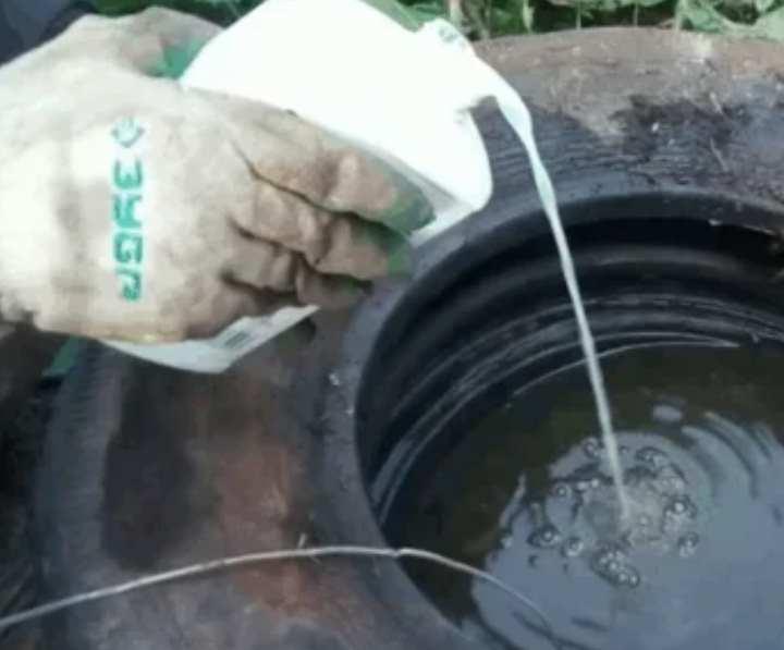 Как можно быстро очистить выгребную яму от ила