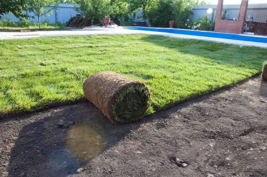 Подготавливаем участок под газон: выравнивание земли под посев травы