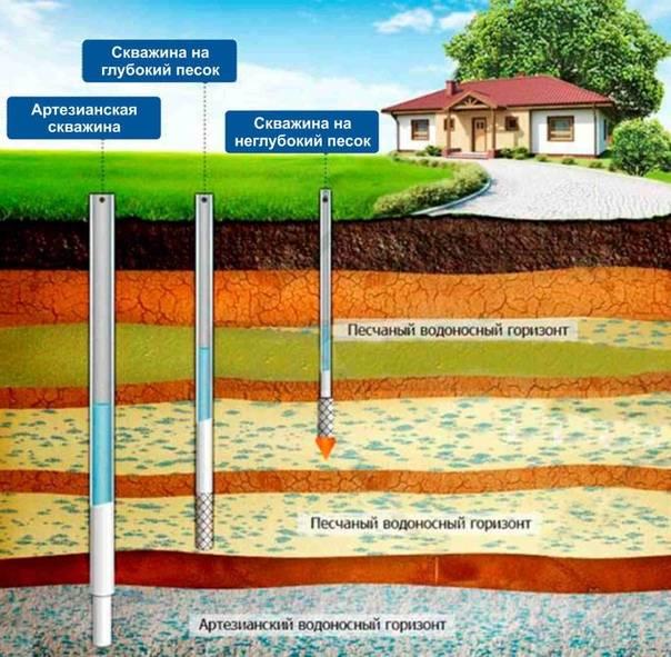 Как найти воду на участке для скважины или колодца