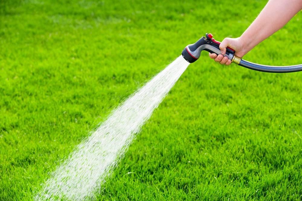 Мнение экспертов о том, можно ли поливать огород холодной водой