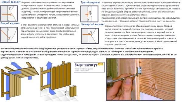 Отделка бани внутри вагонкой своими руками: обзор материалов и пошаговые рекомендации по выполнению работ