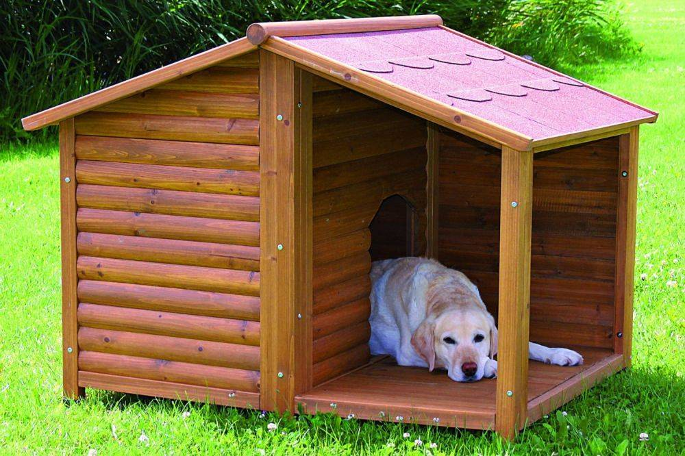 Будка для собаки своими руками: чертежи и размеры, этапы сборки, утепление, фото