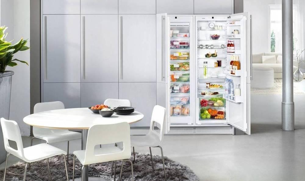 12 лучших недорогих холодильников по отзывам пользователей