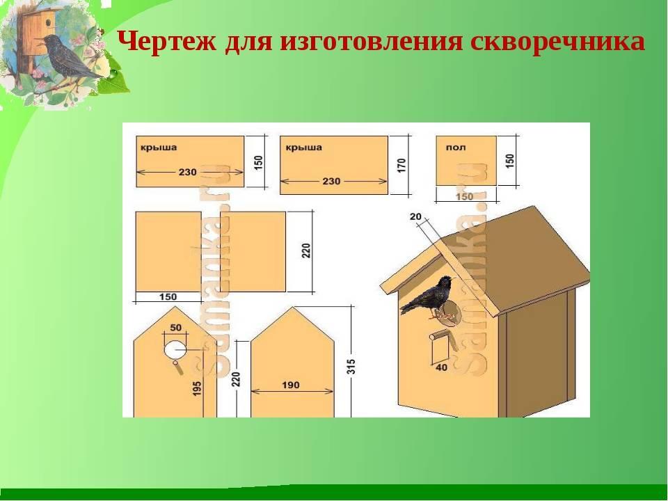 Скворечник своими руками из дерева: чертежи, материалы, декор и установка