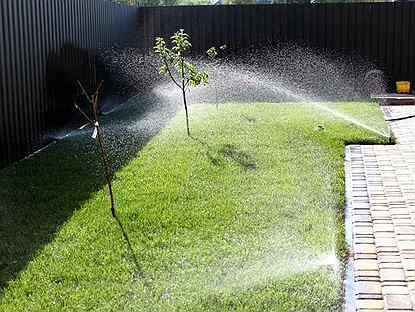 Все о поливе газона