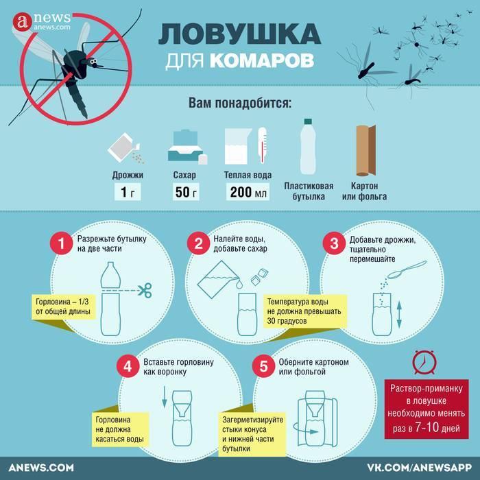 Обработка участка от комаров, выбор средств для уничтожения насекомых по периметру дачи, меры предосторожности