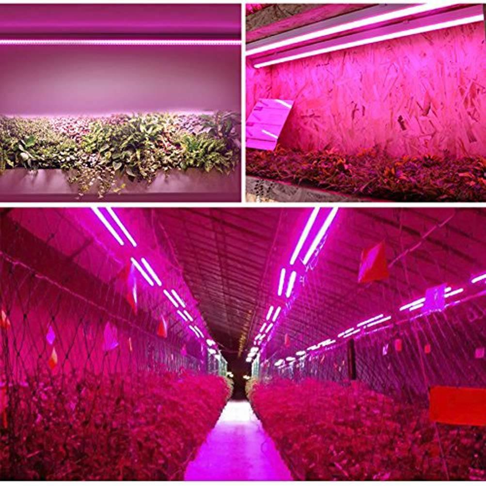 Лампы для теплицы: какие выбрать - ультрафиолетовые или инфракрасные для досвечивания, расчет освещенности, правильное освещение растений зимой, а также как сделать свет своими руками русский фермер