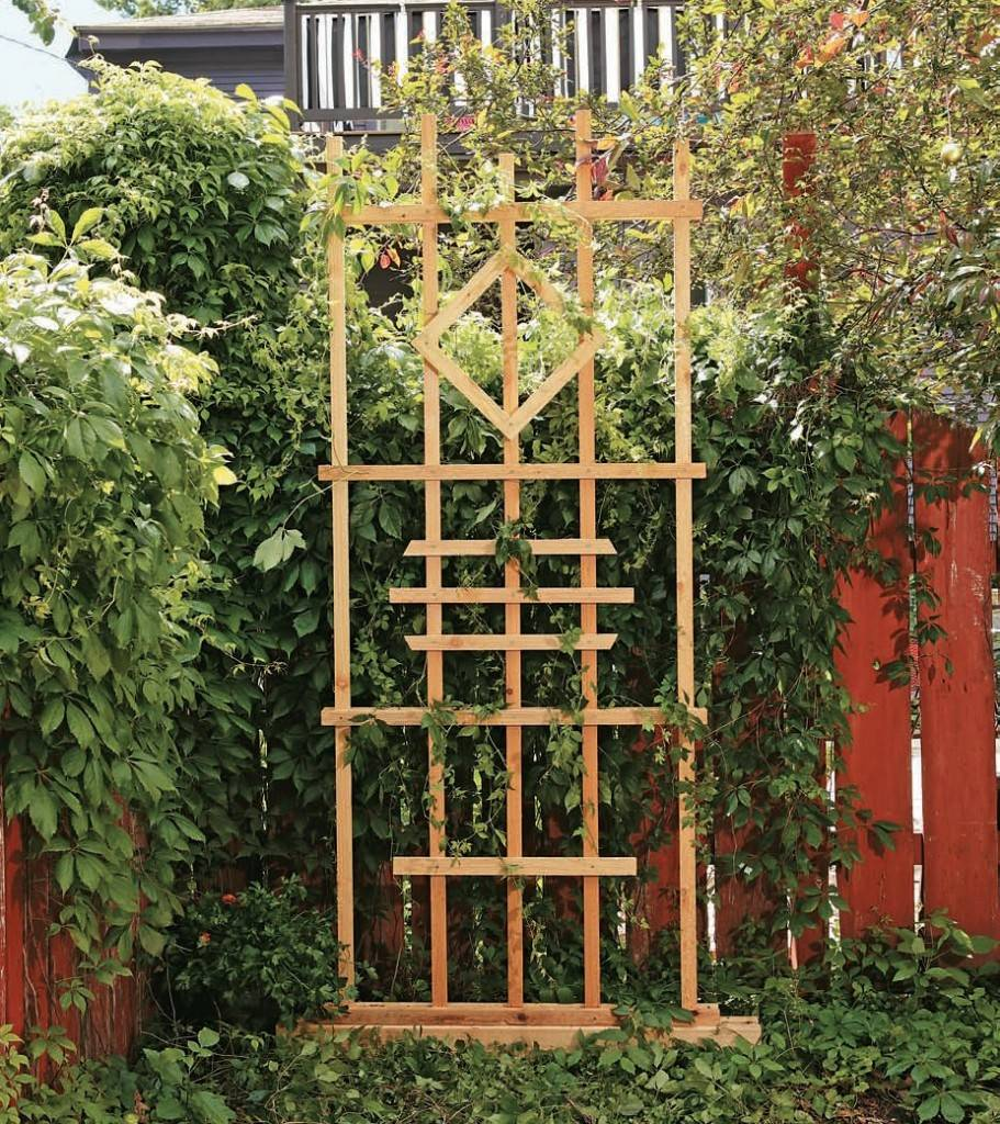 Пергола для вьющихся растений - фото, как сделать, цены | o-builder.ru