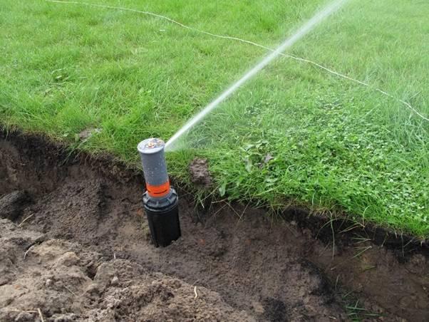 Все о поливе огорода и сада