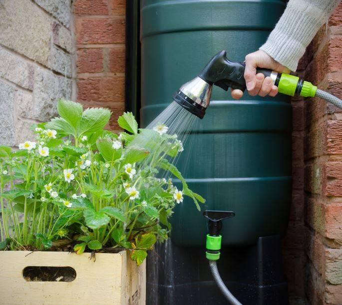 Очистка воды для полива: как не навредить любимому огороду