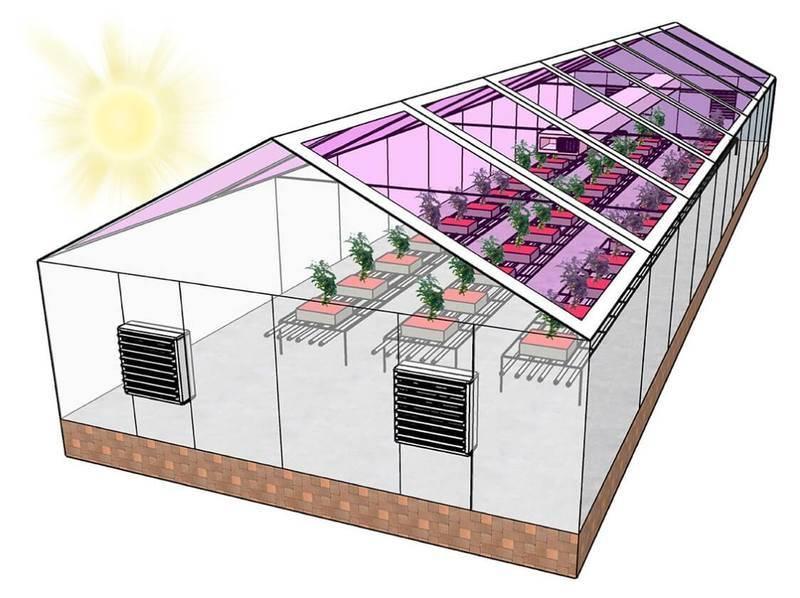 Отопление теплицы: воздушные, водяные, инфракрасные и другие системы