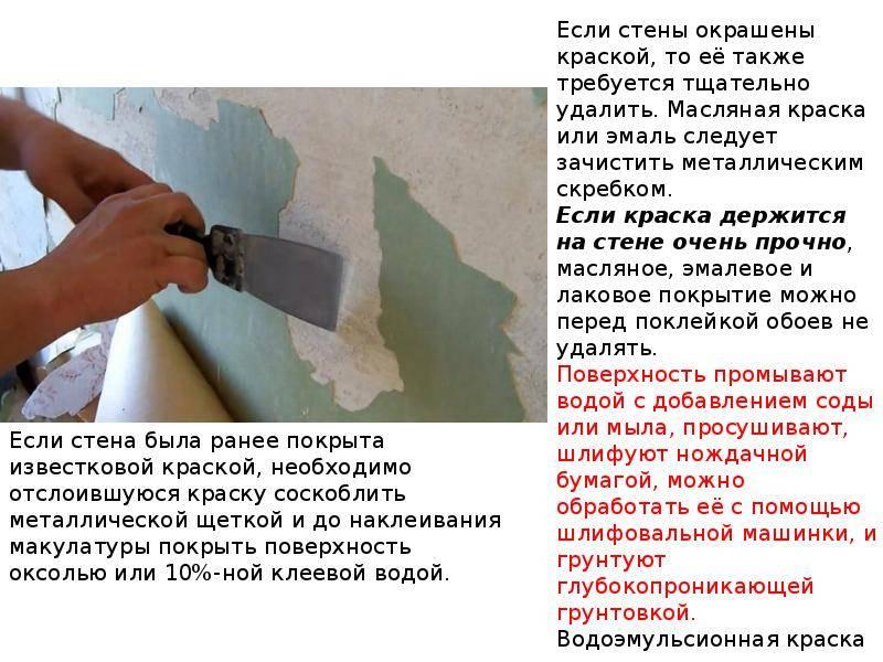 Подготовка стен под покраску: порядок действий, пошаговая инструкция, советы