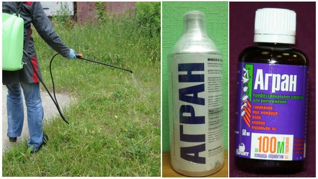 Как избавиться от комаров на дачном участке - лучшие средства для уничтожения