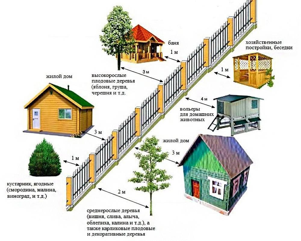 На каком расстоянии от забора, дома или соседнего участка можно строить баню: нормы и правила
