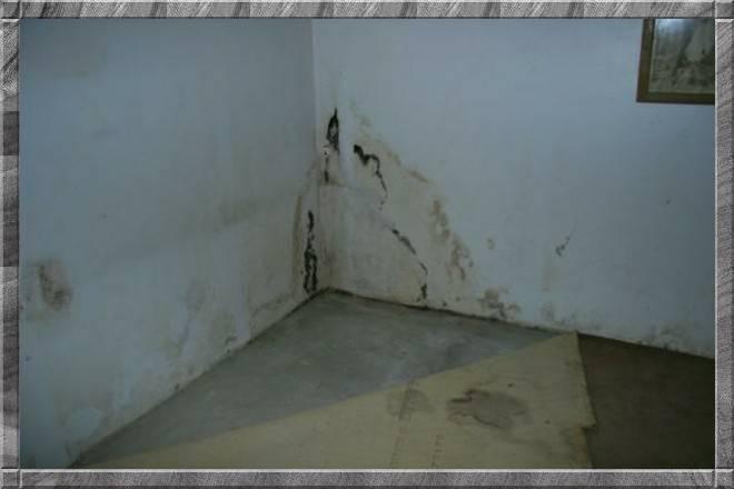 Мокнет угол в квартире как исправить. почему сыреют углы в доме? сыреют углы на верхних этажах здания