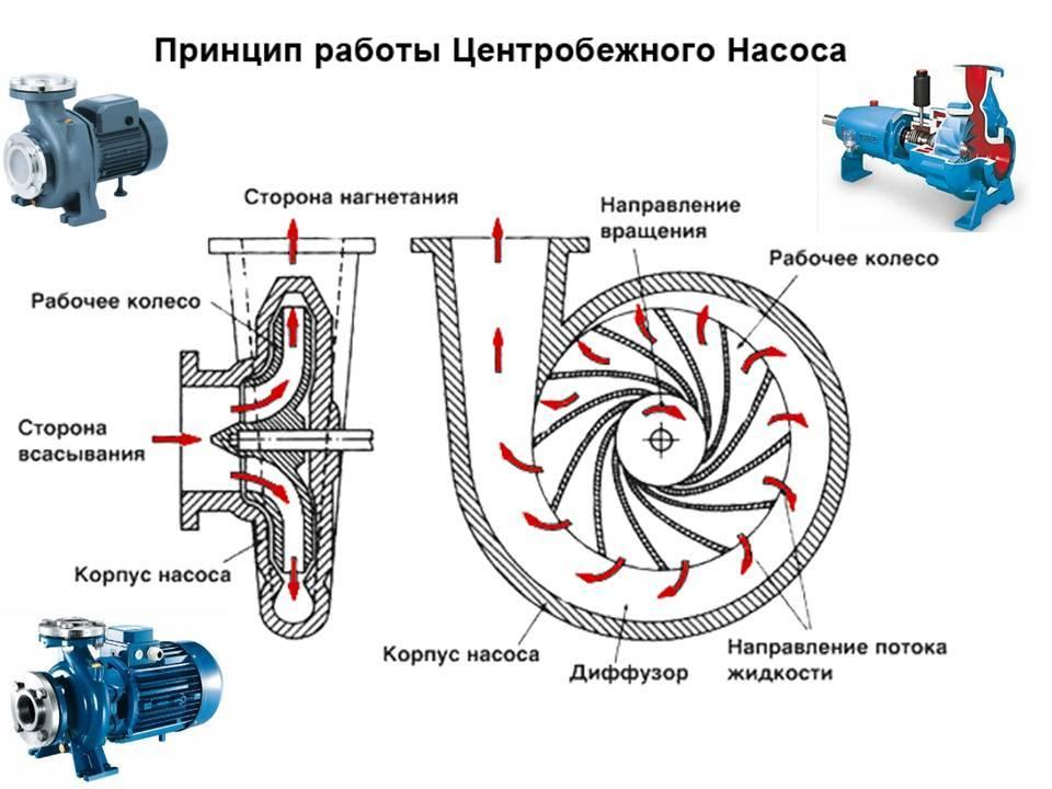 Преимущества использования и разновидности центробежных самовсасывающих насосов для воды
