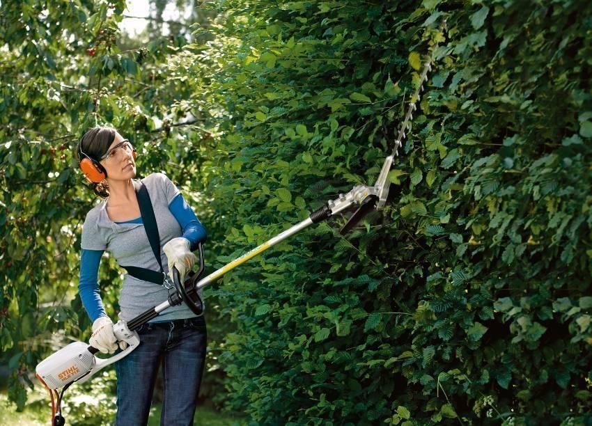 Топ-15 лучших садовых тачек | полезные советы