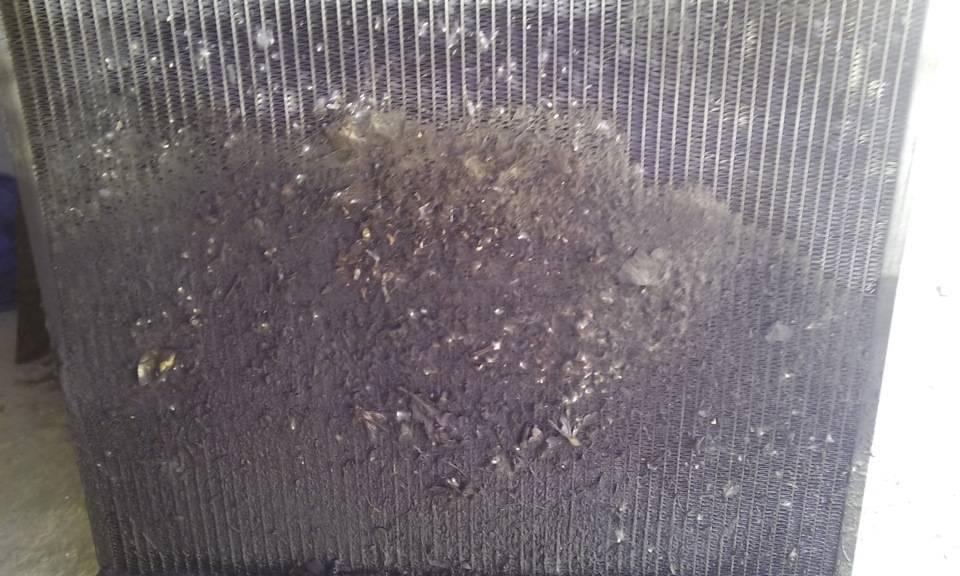 Как промыть батарею отопления: промывка алюминиевых, биметаллических радиаторов в домашних условиях в частном доме