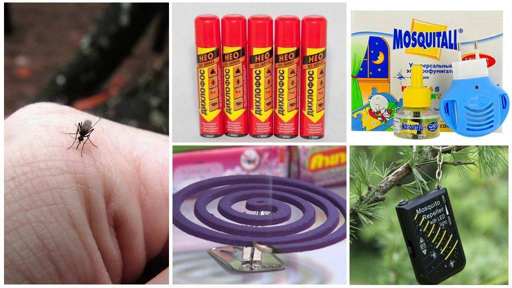 Самостоятельная обработка территории участка от комаров
