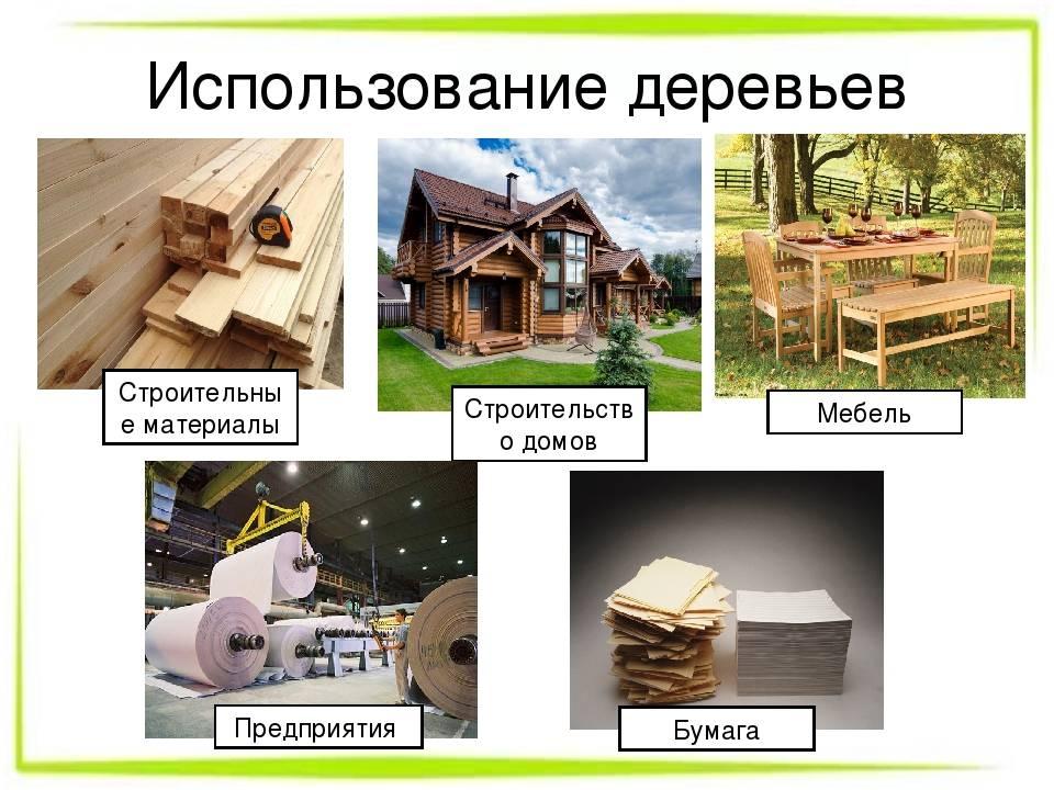 Экологическое строительство и дом из чистых материалов