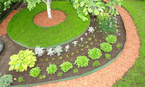 Виды садовой бордюрной ленты и её установка на грядки