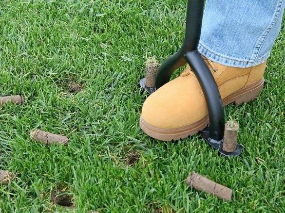 Технология устройства газона своими руками: подготовка почвы, сроки посева травяной смеси для газона