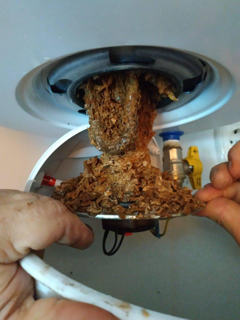 Чистка бойлера от накипи в домашних условиях: промывка водонагревателя