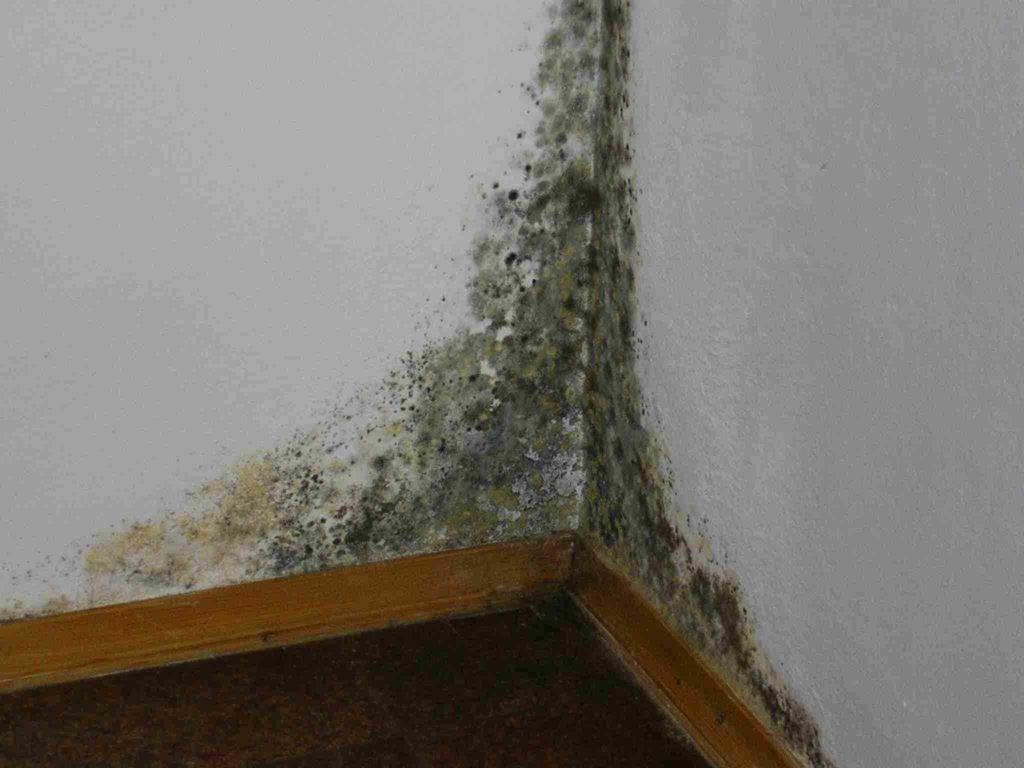 Промерзание стен и углов: причины и методы устранения