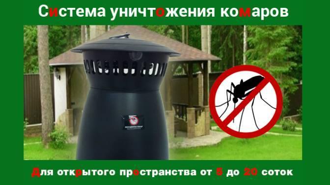 Как избавиться от комаров на дачном участке - лучшие средства