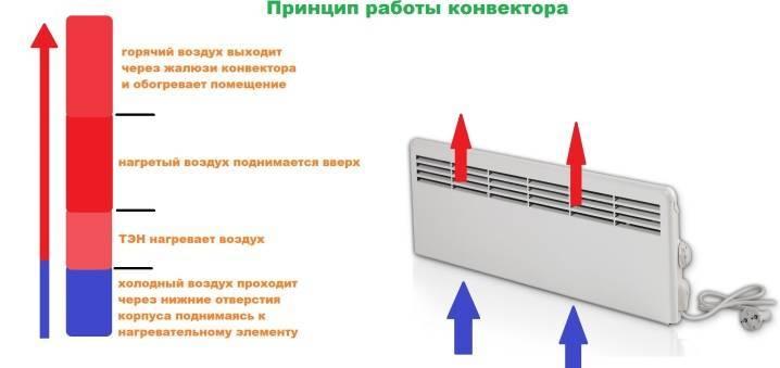 Что лучше радиатор или конвектор: чем отличается, отличие конвекторных радиаторов отопления, батареи, в чем разница между ними