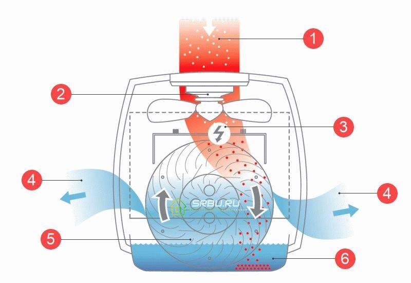 Самодельный увлажнитель воздуха – варианты увлажнения