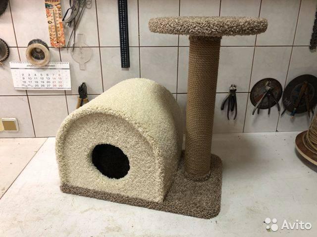 Игровой комплекс для кошек своими руками (23 фото): чертежи и размеры. как сделать красивый настенный комплекс для кота?