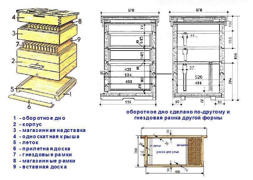 ✅ об ульях своими руками, как сделать улей удав для пчел, чертежи, изготовление - tehnomir32.ru