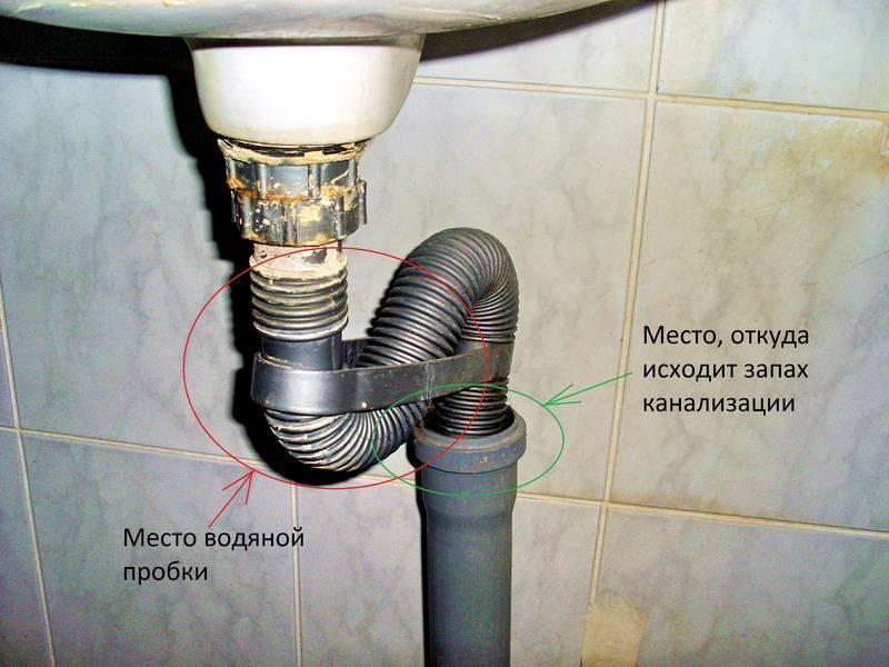 Воняет из раковины на кухне канализацией: что делать, как устранить!