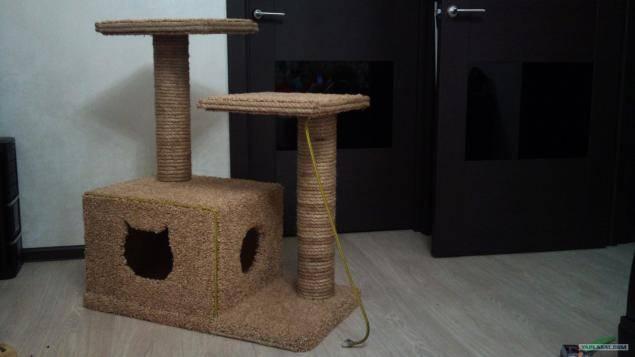 Как сделать уличный домик для кошки своими руками, чтобы было всегда тепло и уютно?
