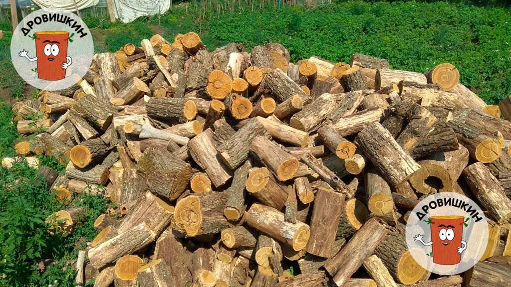 Какими дровами топить баню – выбор и заготовка дров, советы по топке