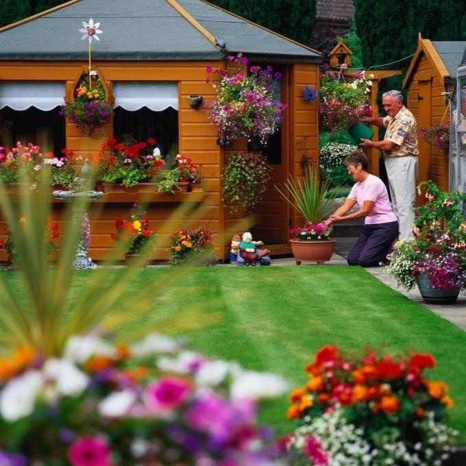Оформление дачного участка и сада цветами, декоративными кустарниками и подручными материалами красиво и недорого  - 19 фото