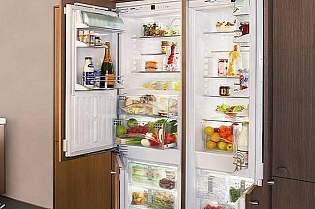 6 лучших двухдверных холодильников