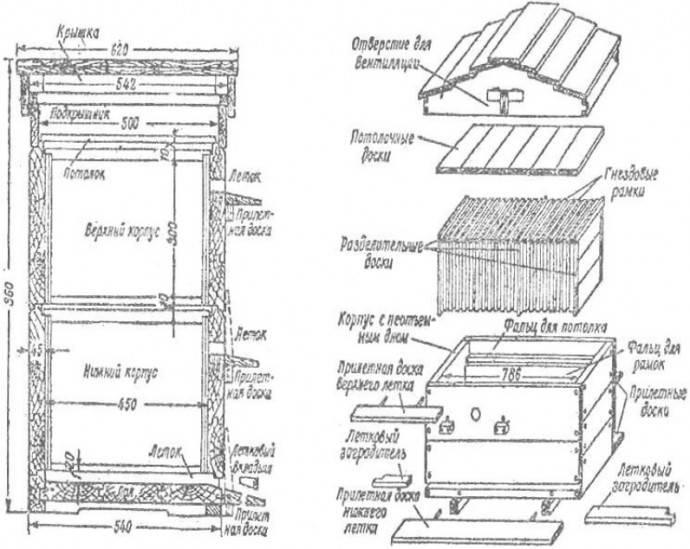 Чертежи ульев: размеры, описание, лучшие модели, технология и нюансы изготовления (95 фото и видео)