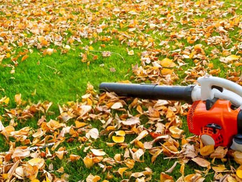 Топ-13 лучших пылесосов для листьев 2020 года в рейтинге zuzako